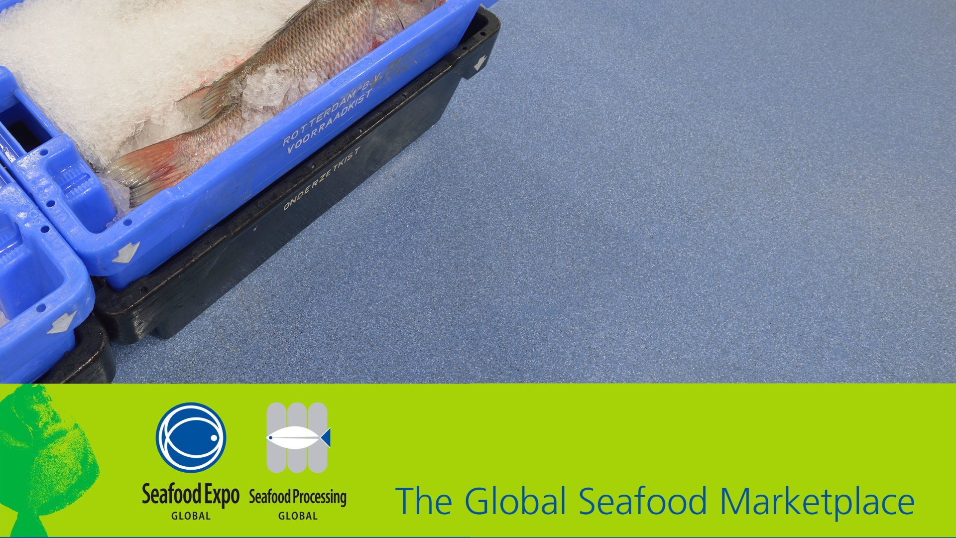 Header The Global Seafood Marketplace